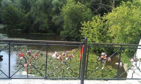 Kuzminki meşə parkı